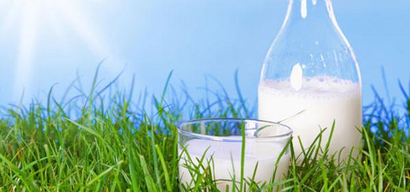 Alternativen zur Milch bei Laktoseintoleranz