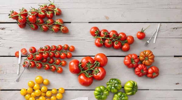 Tomaten Warenkunde