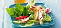 Raw Food – Rohkost mit mehr Genuss