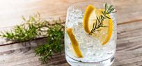 Gin – Kultgetränk zum Mixen und Genießen