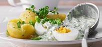 Grüne Soße – für die Extraportion Kräuterfrische