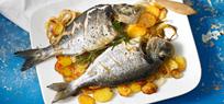 Ratgeber für frischen Fisch