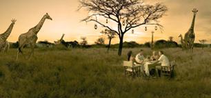 präsentiert von South African Tourism