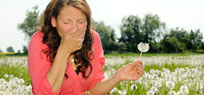 Kreuzallergie – die doppelte Allergie