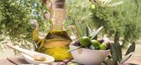 Olivenöl richtig verwenden