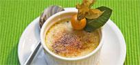 Crème brûlée Der Dessert Klassiker