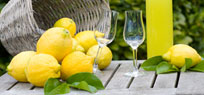 Likör selbst machen: Rezepte und Tipps