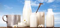 Der Faktencheck: Ist Milch gesund?