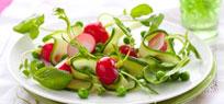 Gurkensalat: erfrischend und vielseitig