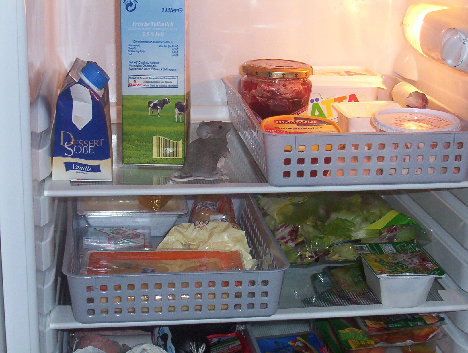 Kühlschrank Korb : Kühlschrankordnung! habt ihr das auch? sonstiges plauderecke