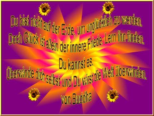 Spruch Des Tages Vom 22 März Sonstiges Plauderecke Forum
