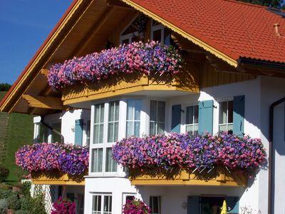 was pflanzt ihr in eure balkonk sten haus garten forum. Black Bedroom Furniture Sets. Home Design Ideas