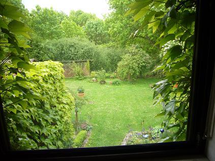 Blick aus dem fenster bilder  Blick aus dem Fenster in den Garten | Haus & Garten Forum ...