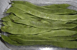 Cocobohnen