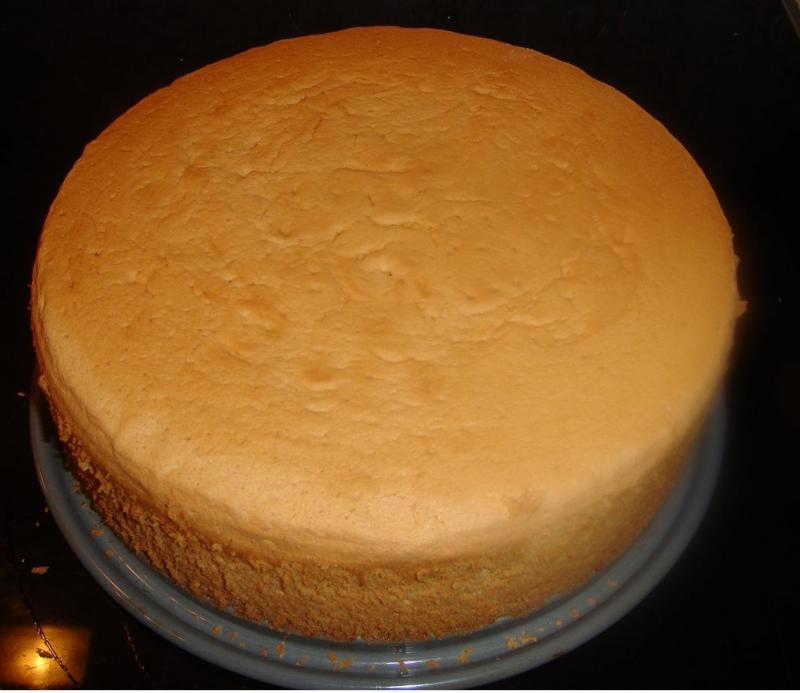 Kuchen mit biskuitboden thermomix