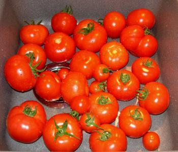 frust meine tomaten werden alle nicht reif haus. Black Bedroom Furniture Sets. Home Design Ideas