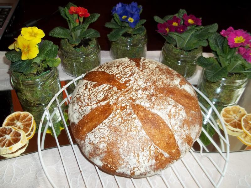 Brot Brötchen backen 26 02 04 03 2011 3698456419