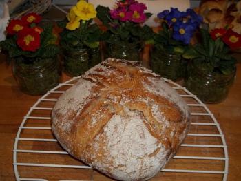 Brot Brötchen backen 26 02 04 03 2011 1982542060