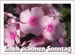 Kochen Sonntag 22 Sept 2013 1139170892