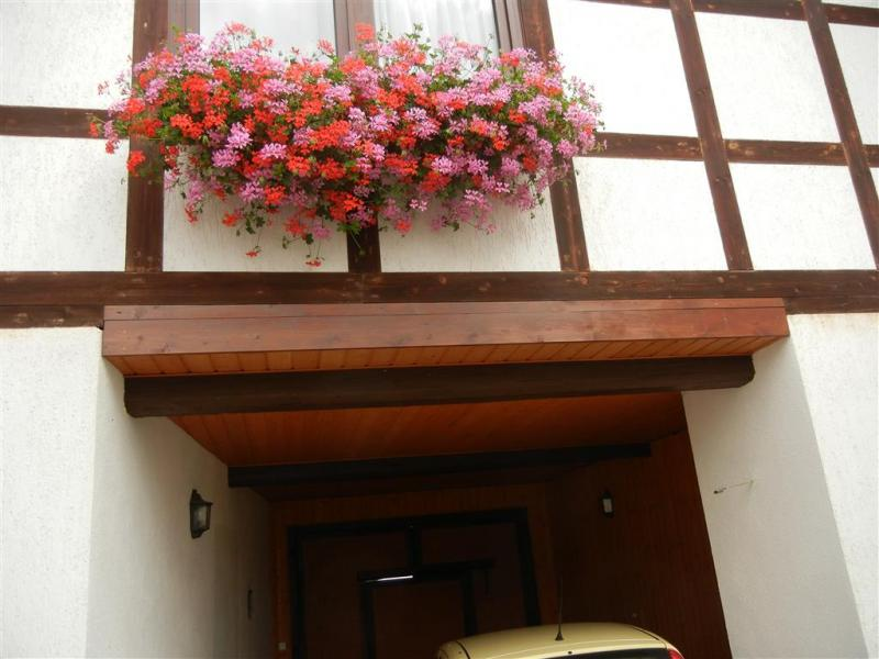 balkonpflanzen d ngen haus garten forum. Black Bedroom Furniture Sets. Home Design Ideas