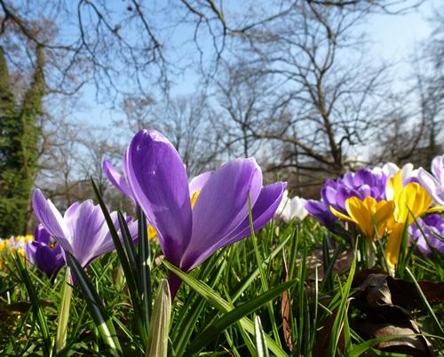 Sprüche Und Gedichte Am Sonntag Den 8 März Sonstiges