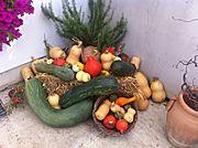Nutzgarten:  Gemüse- und Obstanbau im eigenen Garten oder Balkon