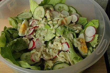 Amerikanischer Salat 2