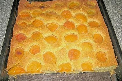 Pflaumen- , Kirschen-  oder Aprikosenkuchen 5