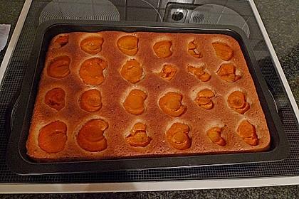 Pflaumen- , Kirschen-  oder Aprikosenkuchen 2