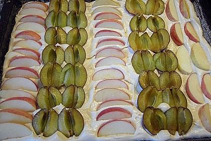Pflaumen- , Kirschen-  oder Aprikosenkuchen 3