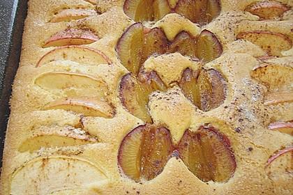 Pflaumen- , Kirschen-  oder Aprikosenkuchen 4