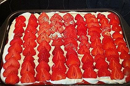 Erdbeer-Tiramisu 77