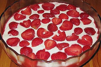 Erdbeer-Tiramisu 46