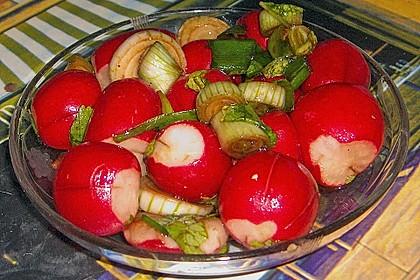 Radieschensalat 7