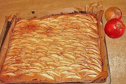 Apfelkuchen 25