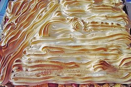 Rhabarberkuchen 22