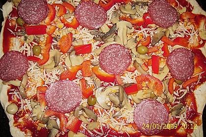 Pizzateig 95