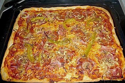 Pizzateig 43