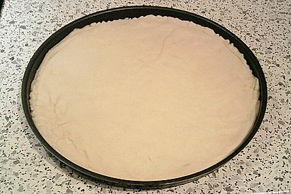 Pizzateig 44