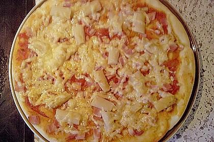 Pizzateig 146