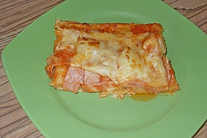 Pizzateig 91