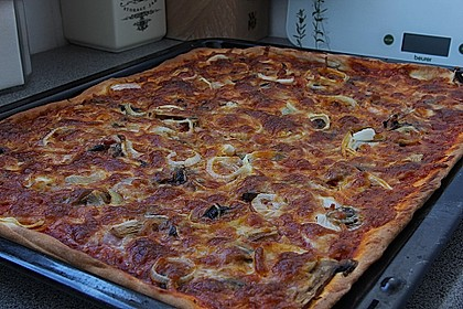 Pizzateig 108