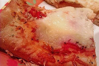 Pizzateig 72