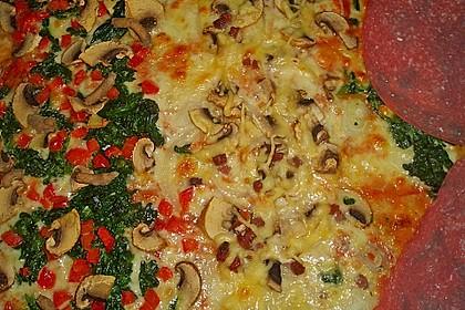 Pizzateig 134