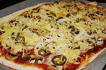 Pizzateig 119