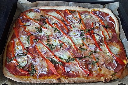 Pizzateig 53