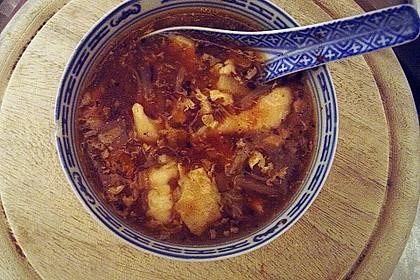 Pikant - säuerliche Suppe 1