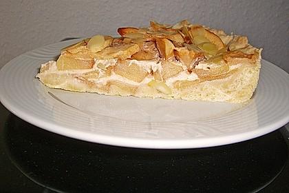 Apfelkuchen mit Amaretto - Sahne - Guss 9