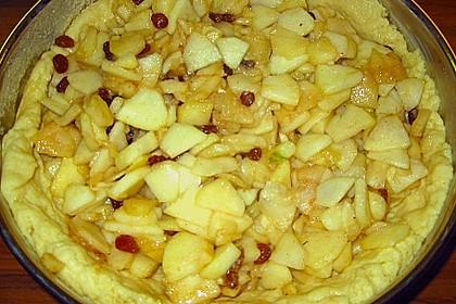 Apfelkuchen mit Rosinen und Zimt