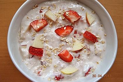 Erdbeer - Apfel - Nuss - Müsli 9